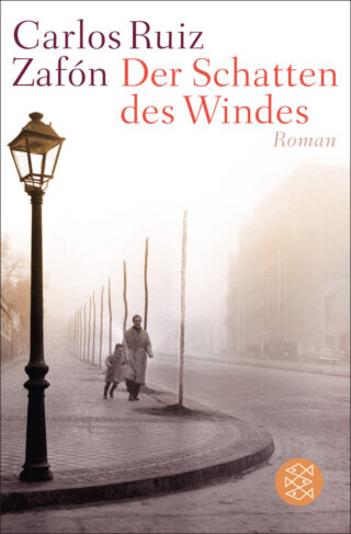Der Schatten des Windes Book Cover