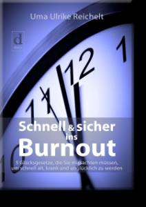 dielus_schnell_und_sicher_ins_burnout_cover_schatten-e1507122362228