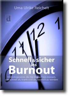 Schnell & sicher ins Burnout Book Cover