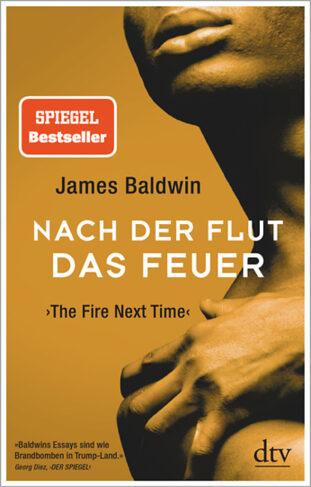 Nach der Flut das Feuer Book Cover