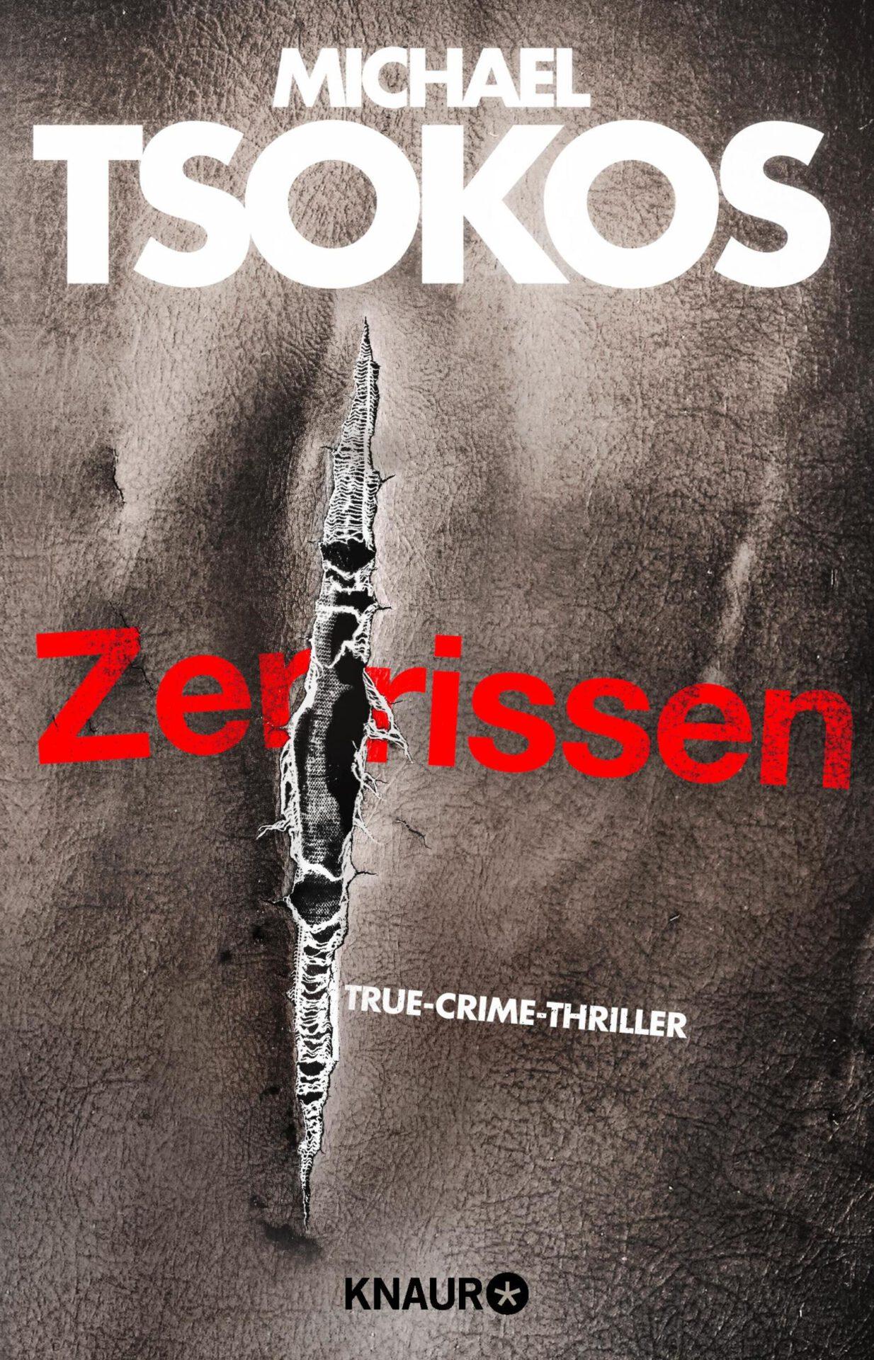 Zerrissen Book Cover